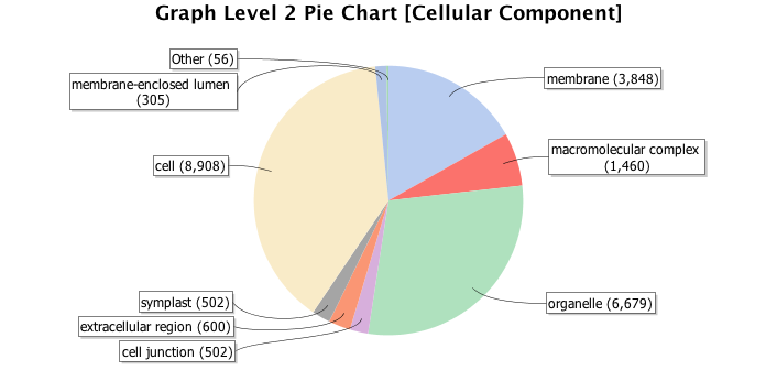 Image graph_level_pie_chart